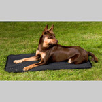 Back on Track® Canine Mattress, Allround